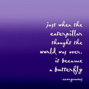 butterflyquote